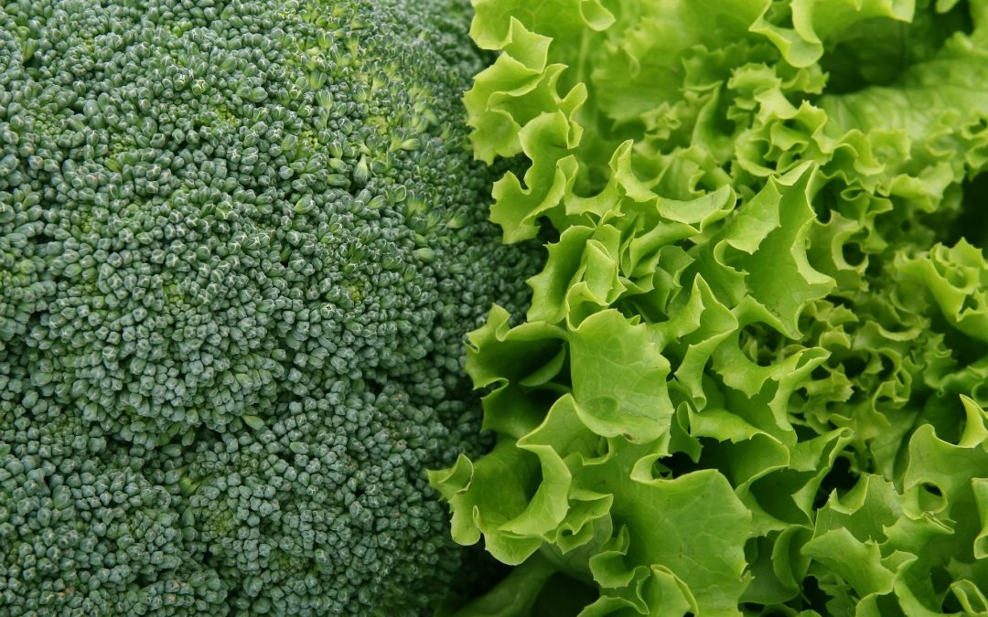 The Preventative Effects of Cruciferous Vegetables on Cancers & Dementia and their Toxicities
